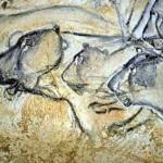 Art de la Fresque - Chauvet Lions